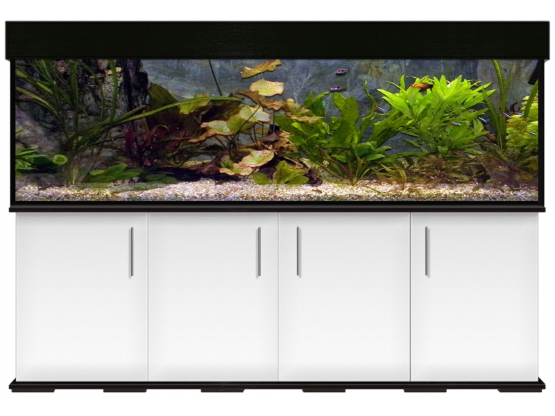 Aquariumkombination modern 200x50x60 - Rechteck, 600l, 12mm bei Meduza6