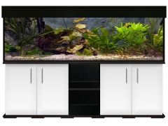 aquariumkombination modern r 200x50x60 600l 12mm ebay. Black Bedroom Furniture Sets. Home Design Ideas