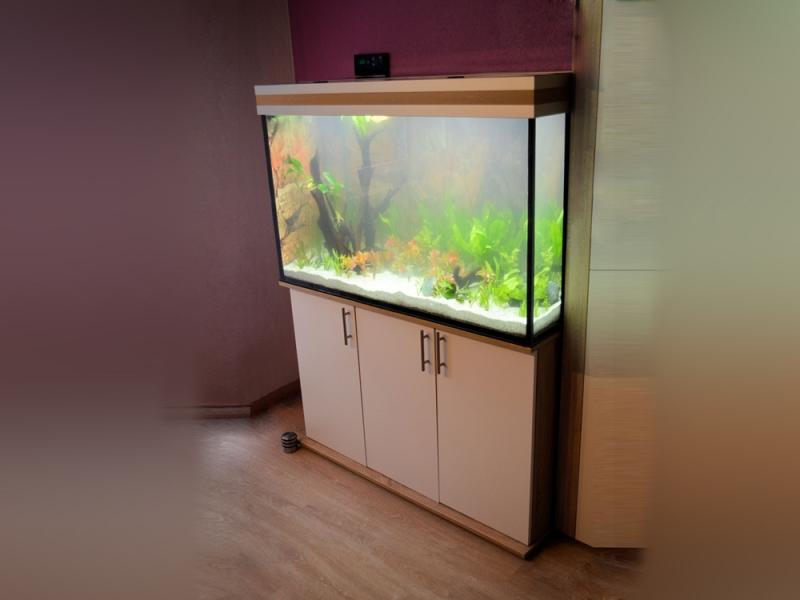 aquarium unterschrank modern 120x50 rechteck bei meduza6. Black Bedroom Furniture Sets. Home Design Ideas