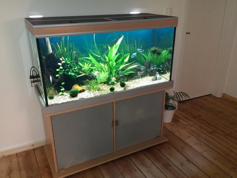 aquarium unterschrank modern 120x70 rechteck bei meduza6. Black Bedroom Furniture Sets. Home Design Ideas