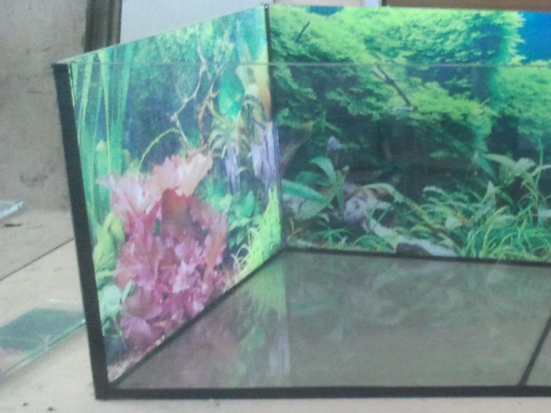 Aquarium in verschieden gr en bei - Aquarium hintergrund ausdrucken ...
