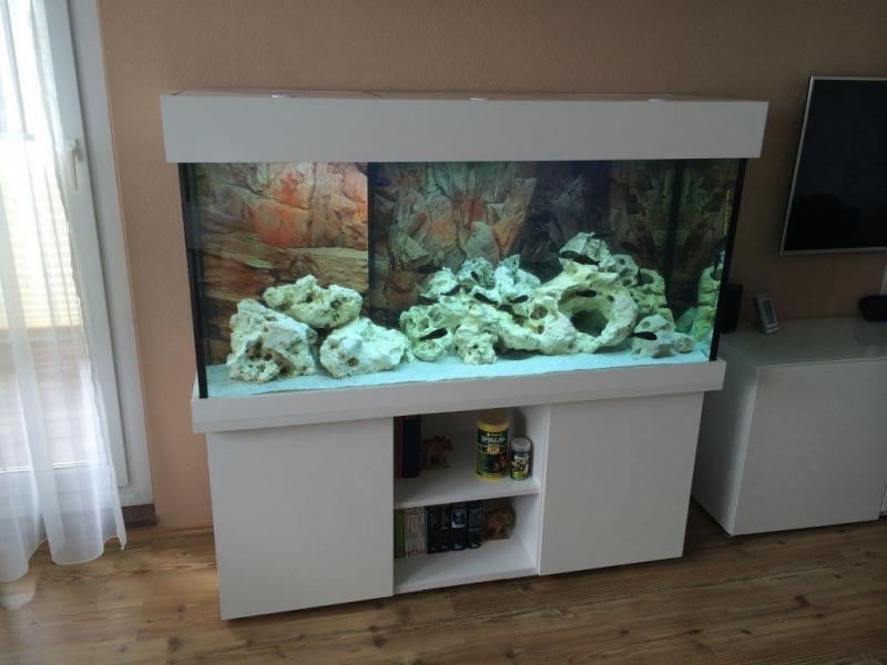 aquariumbau komplettaquarium. Black Bedroom Furniture Sets. Home Design Ideas