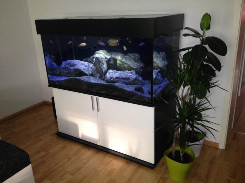Aquarium Unterschrank Modern 130x60 Rechteck Bei Meduza6
