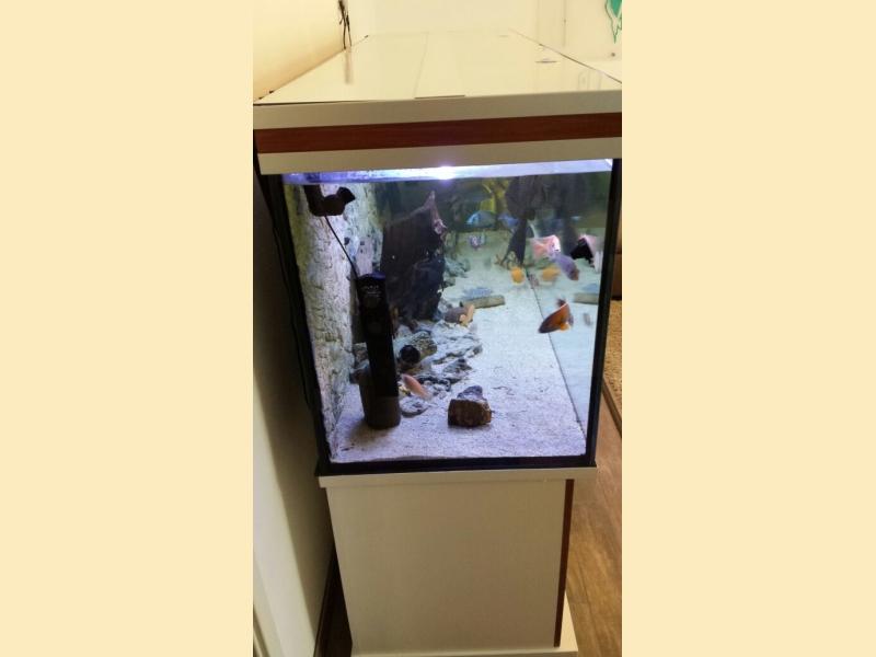 M?belplatten Eiche Sonoma : AquariumUnterschrank modern+s 200×50  Rechteck bei Meduza6