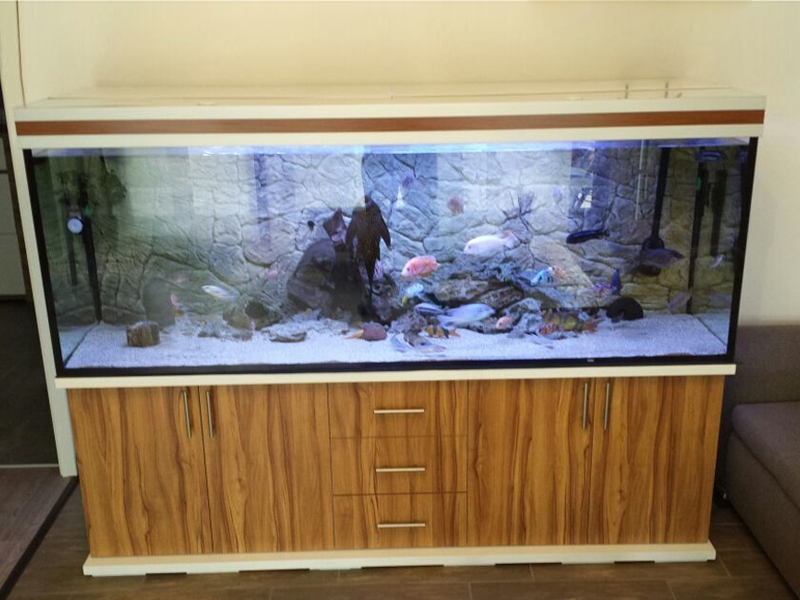 aquarium unterschrank modern s 200x50 rechteck bei meduza6. Black Bedroom Furniture Sets. Home Design Ideas