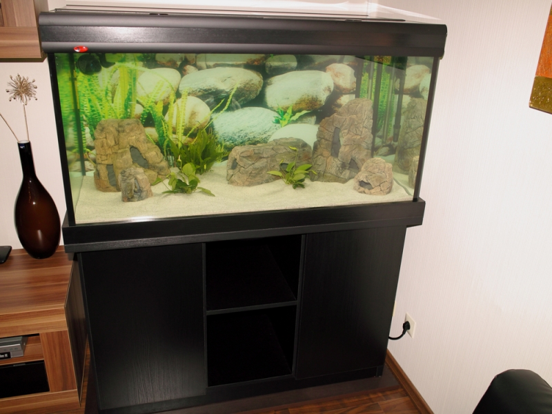 3d aquarium r ckwand 120 60 aquariumr ckwand d nn prima. Black Bedroom Furniture Sets. Home Design Ideas
