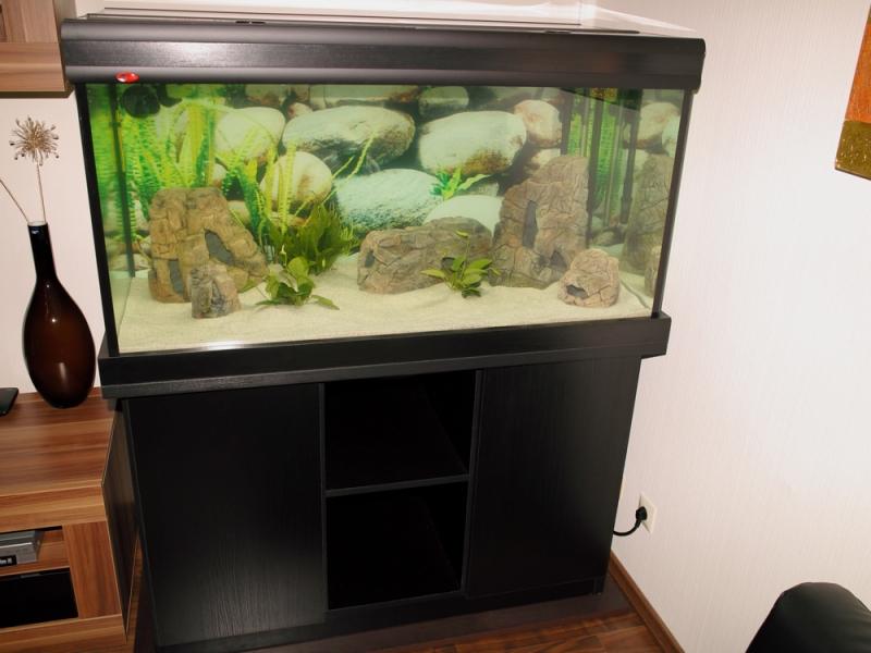 3d aquarium r ckwand 120 60 aquariumr ckwand d nn prima. Black Bedroom Furniture Sets. Home Design Ideas