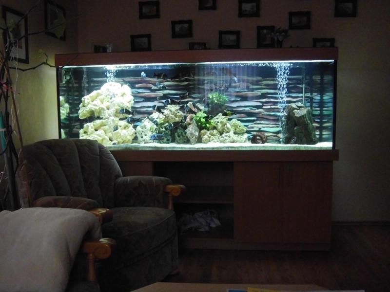 aquarium unterschrank 120x50 aquarium unterschrank. Black Bedroom Furniture Sets. Home Design Ideas