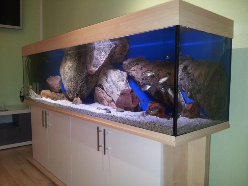 Aquarium unterschrank standard 200x50 rechteck bei meduza6 for Aquarium unterschrank